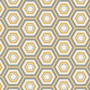 Hexa-Honeycomb